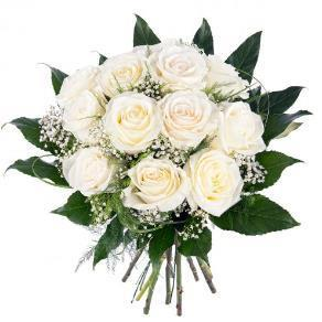 Rosas Blancas Mercado47